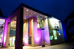 Attractions and Places to Visit in Chelmsford